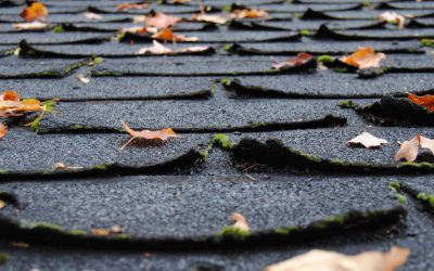 4 Signs That You Need a Roof Replacement