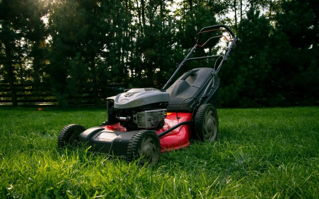Tips for Summer Lawn Maintenance